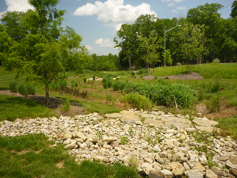 Green-Infrastructure-Design-for-Wetlands-Reclamation-–-University-of-Cincinnati
