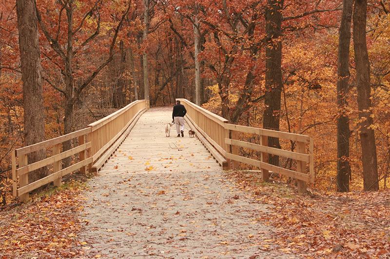 Park-Improvements-–-Goodenow-Grove-Nature-Preserve-2