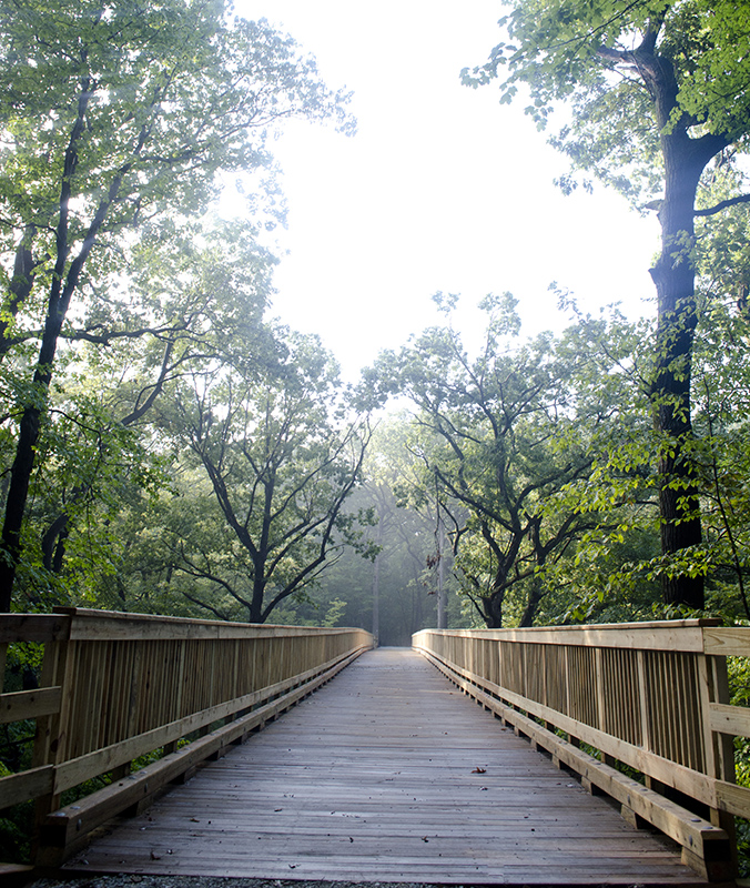 Park-Improvements-–-Goodenow-Grove-Nature-Preserve-3