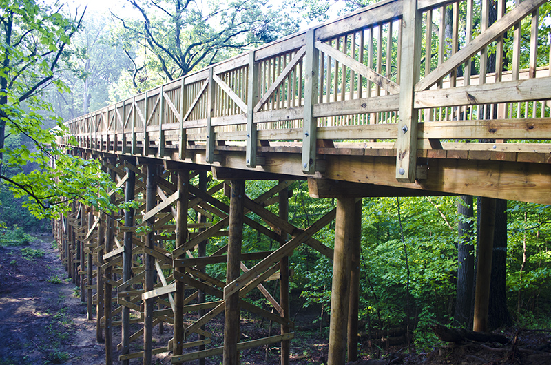 Park-Improvements-–-Goodenow-Grove-Nature-Preserve-4