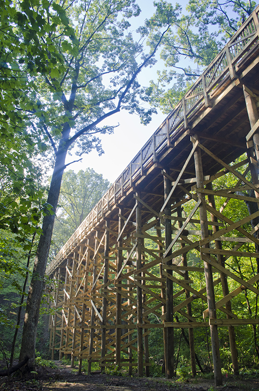Park-Improvements-–-Goodenow-Grove-Nature-Preserve-5