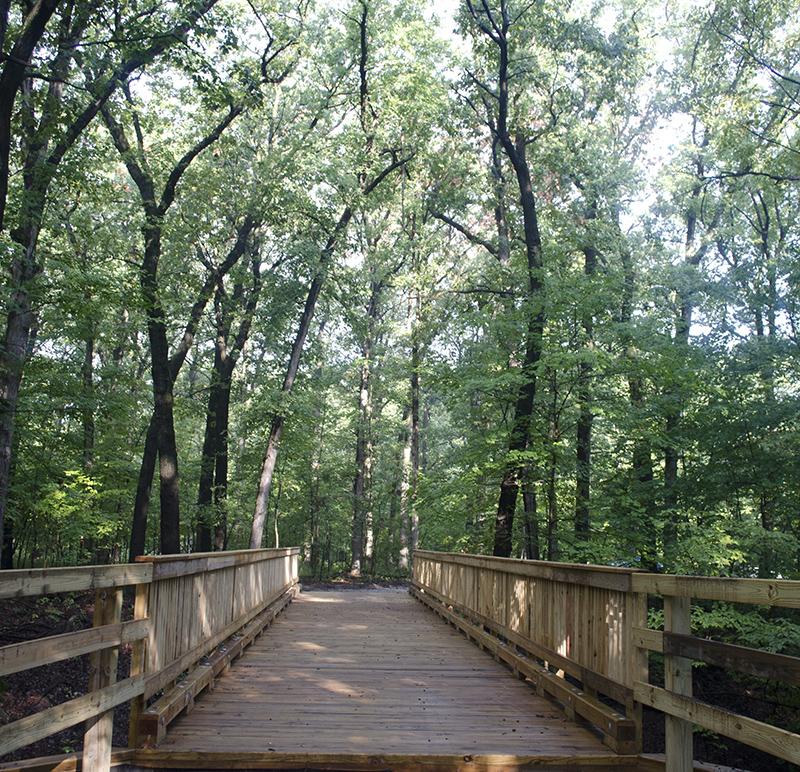 Park-Improvements-–-Goodenow-Grove-Nature-Preserve-6