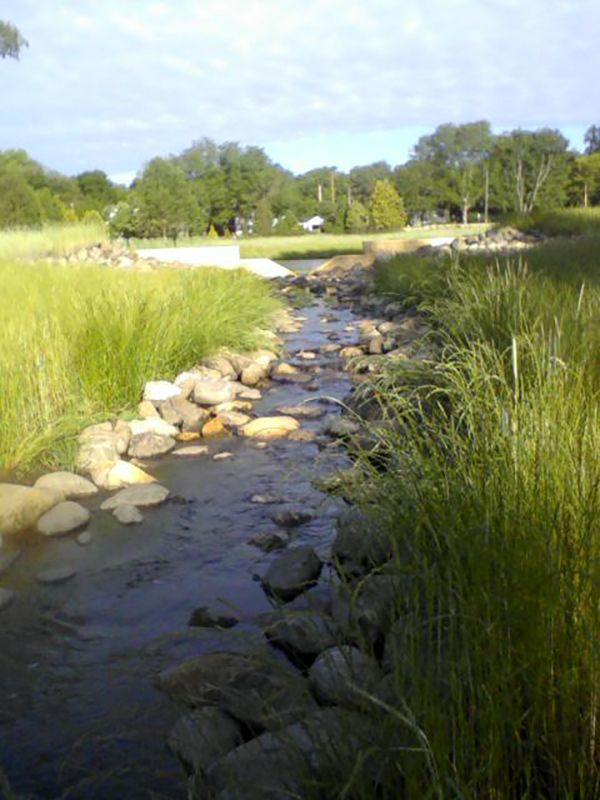 Urban-Stormwater-Runoff-Pollution-Control-System-Restoration-–-Madison-WI